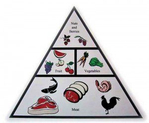 healthy paleo foods